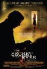 Secret in Their Eyes Poster